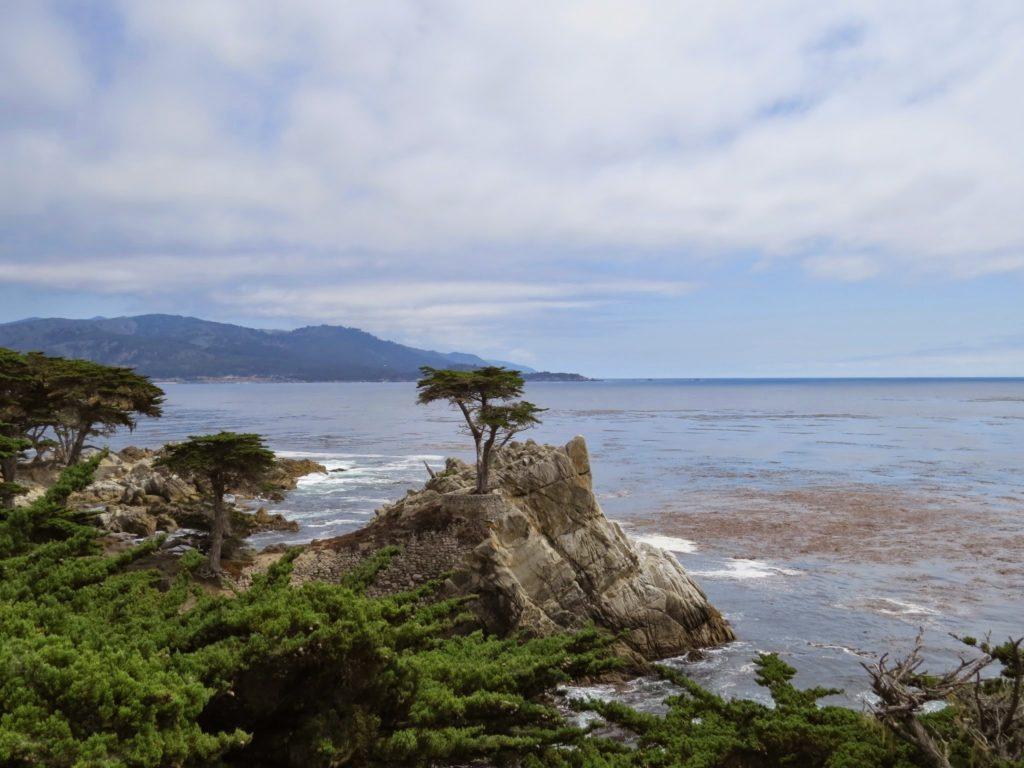 california - 17-mile drive